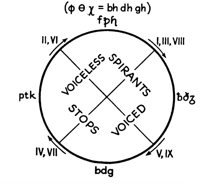 The Indo European Consonants